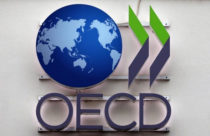 全球貿易放緩 OECD:這區域受打擊最大