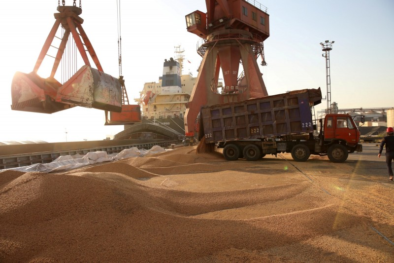 進海關了!中國11月進口美大豆創20個月高點