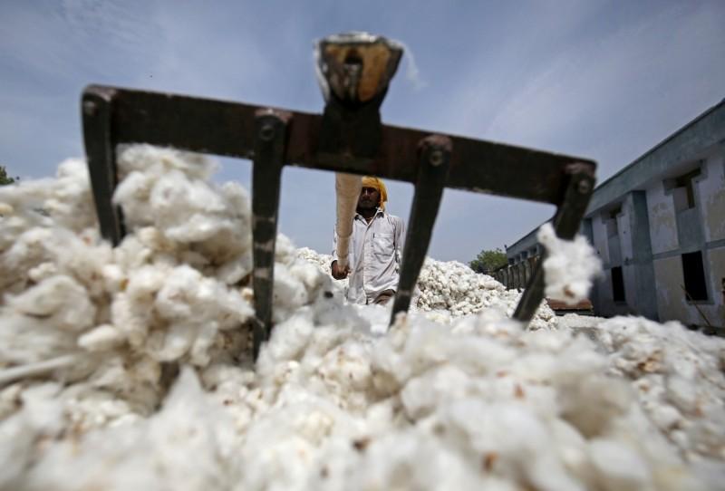 武漢肺炎》憂銀行、港口關閉  印度棉花出口商停止出貨中國
