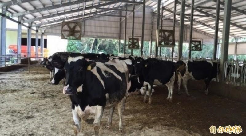 農業外勞再擴大!畜牧、養殖、蘭花和菇類預計引進2400人