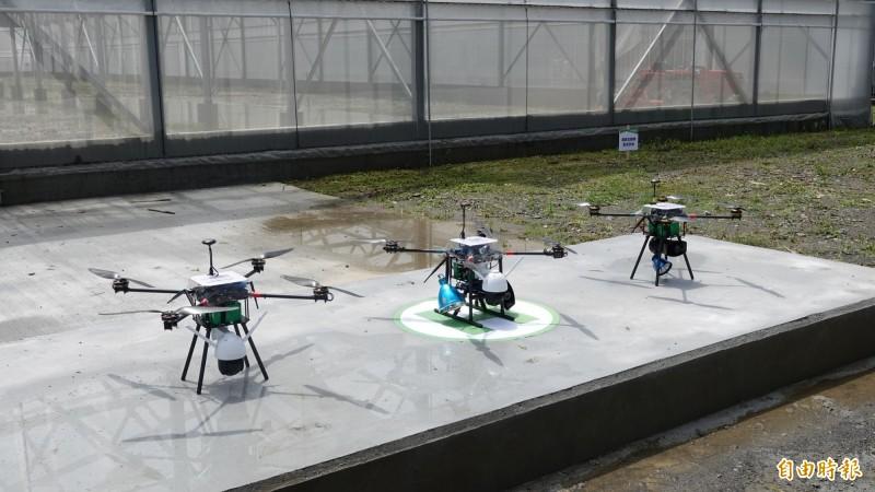 智慧升級|高科大團隊應用AI  遠端遙控農棚種菜、太陽能種電 - 自由財經