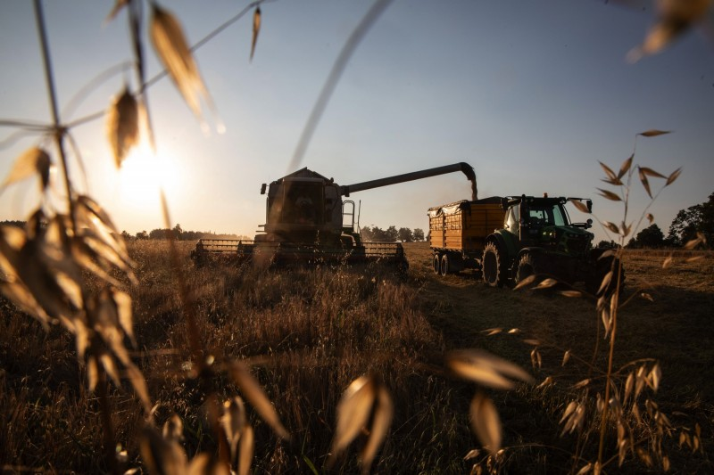 找碴?北京禁止澳洲最大穀物商大麥輸中