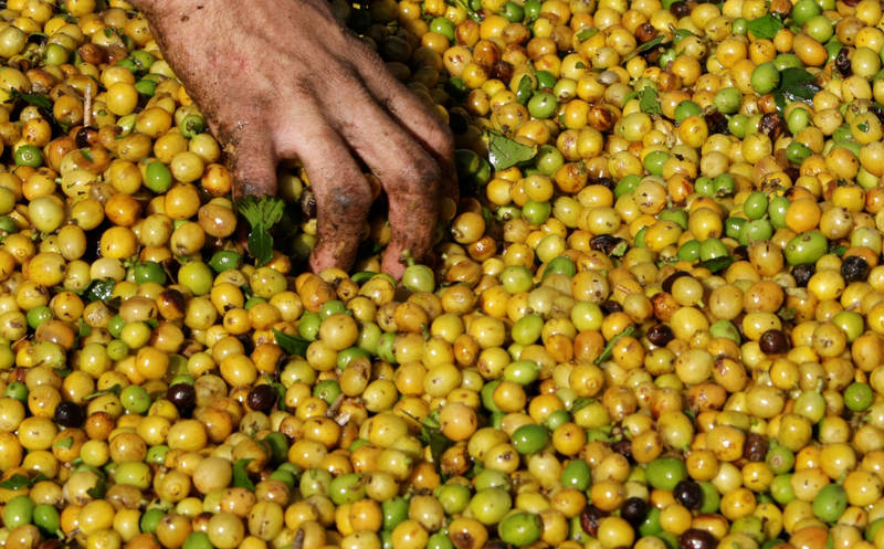 阿拉比卡咖啡豆價崩!本週跌幅22年來最慘