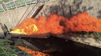 狄鶯獨子在美被捕 自製噴火器開價33K影片曝光