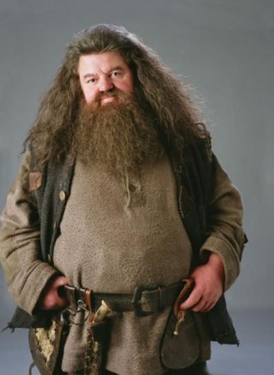 《哈利波特》的溫柔巨人 68歲海格近況曝光網全哭了