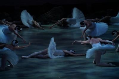 (影音)像置身馬林斯基劇院觀賞《天鵝湖》