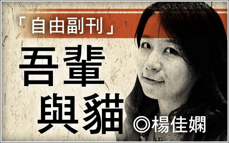 【自由副刊.吾輩與貓】楊佳嫻/花貓交相映