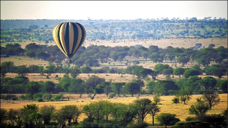 【旅遊】驚心動魄!動物大遷徙─坦尚尼亞獵遊記