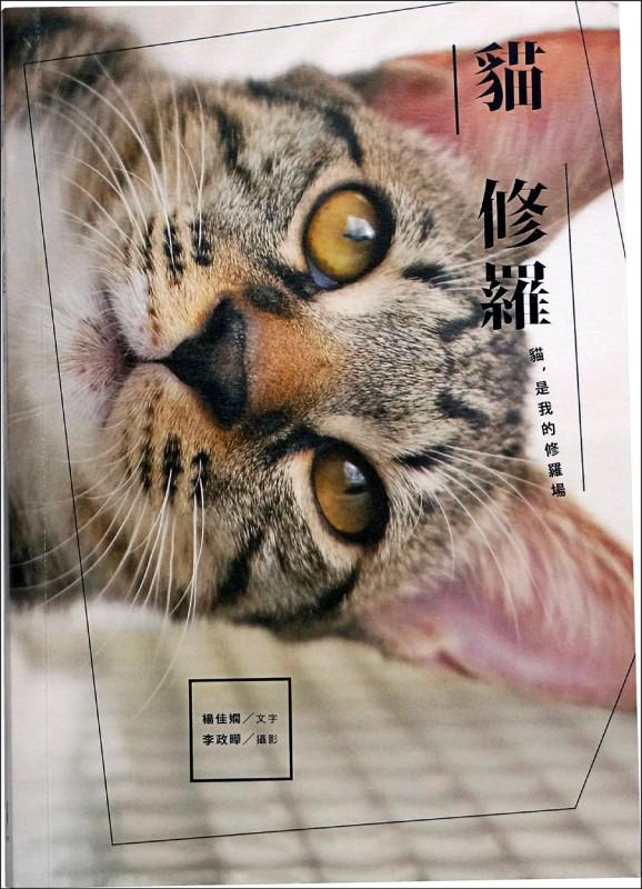 【自由副刊.愛讀書】《貓修羅》