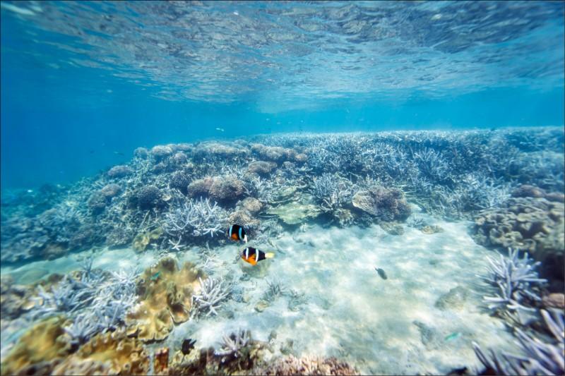 【旅遊】〈尋祕境出遊趣2-1〉超神祕海上長城─南方四島
