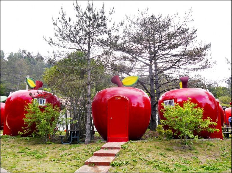 【旅遊】農場尋花蹤,古道探祕境─遊台中梨山