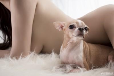 劉樂妍「裸體夾狗」 雪白巨乳被看光