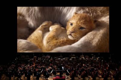 (影音)來自遙遠非洲的問候 《獅子王》原唱Lebo M. 迫不及待訪台演出