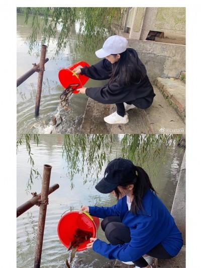 神奇巧合!潘瑋柏空姐妻藏內情    網驚:流水線作業