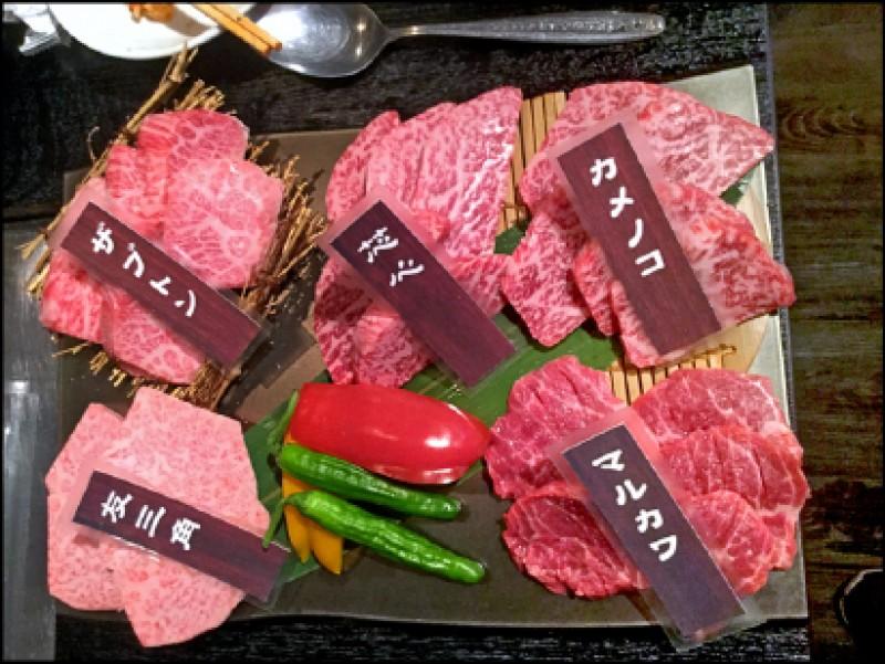 【家庭plus】〈極品一人家庭〉一人燒肉 幸福感洋溢