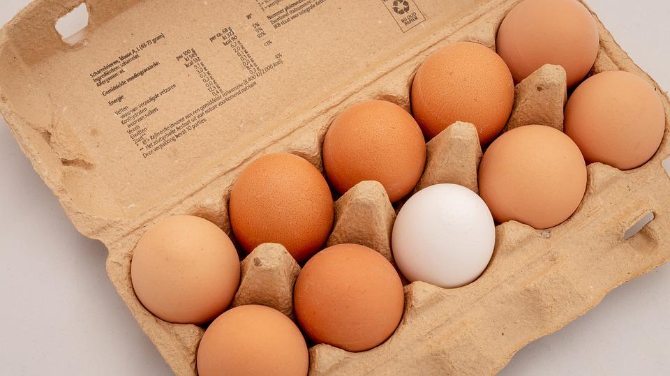 土雞蛋比較營養?買蛋越大顆越好?「雞蛋挑買&保存」你做對了嗎?