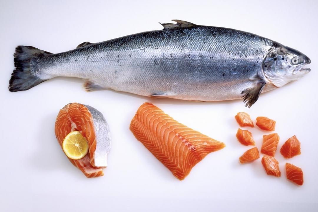 挑戰膠原蛋白、玻尿酸!「鮭魚蛋白聚醣」營養師解密美容保健最新關鍵字