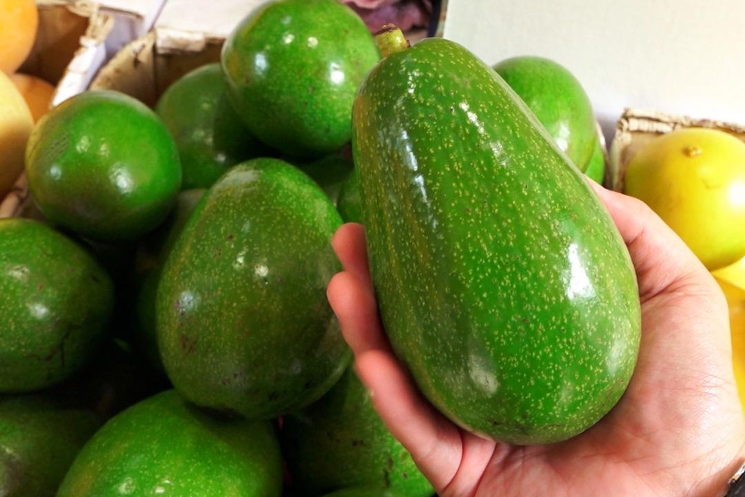 酪梨竟然不是水果?營養師曝:吃一顆等於油脂爆量!