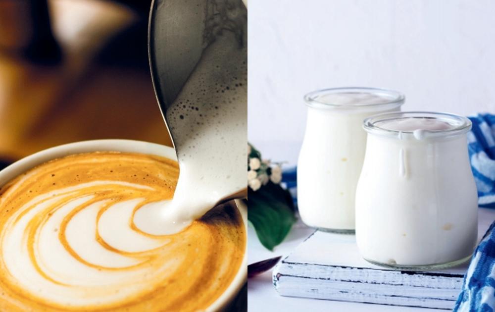 燕麥奶除了泡咖啡還能怎麼用?教你做優格、巧克力榛果醬