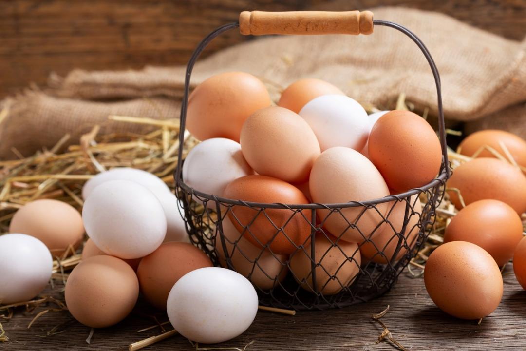 紅殼雞蛋比白殼蛋補?價格差很大!營養師曝背後原因