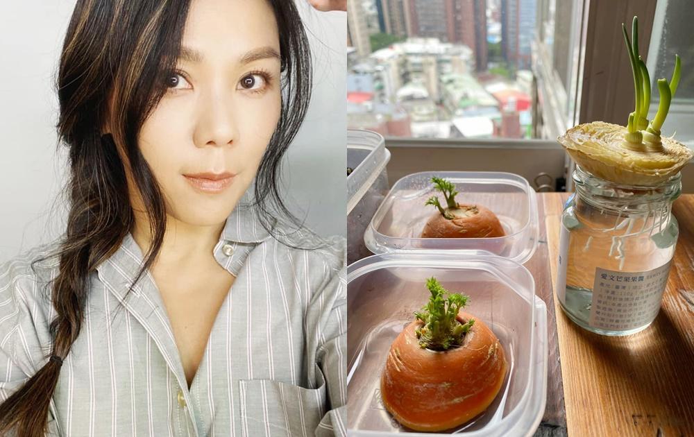 蔡健雅宅在家迷上「以菜種菜」直呼超療癒!用剩的青蔥、蘿蔔巧手變植栽