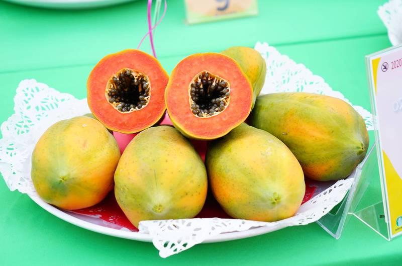 紅木瓜、青木瓜營養PK 小心豐胸不成這個也變大