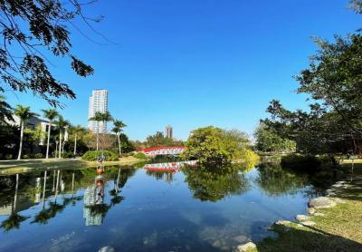 高雄人均公園綠地面積六都第一 大公園景觀宅正夯