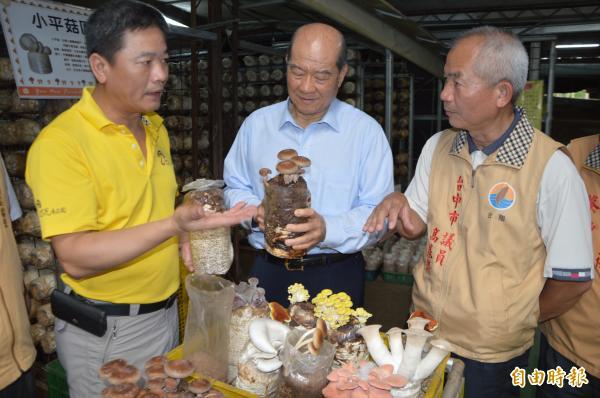 台聯主席黃昆輝(圖中)拜訪菇農侯文亮(圖左),讚揚菇農的不斷創新。(記者張瑞楨攝)
