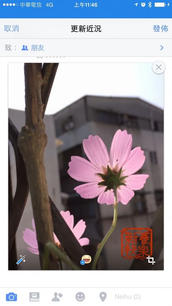 臉書提供照片加貼圖功能,只要加上一個「新春快樂」圖章,立即年味大增!(記者陳炳宏翻攝)