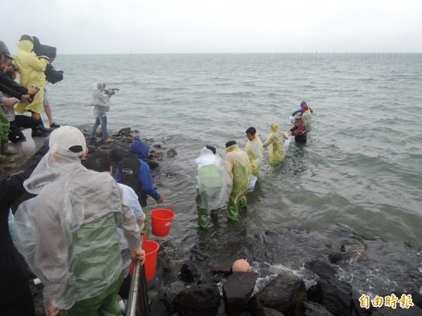 放流蟹苗以接力方式,將一桶桶蟹苗送回大海懷抱。(記者劉禹慶攝)