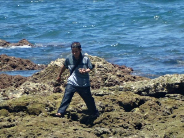 又有中客到台東杉原遊玩,竟把活體珊瑚活生生摘下來。(保育志工陳玉霖提供)