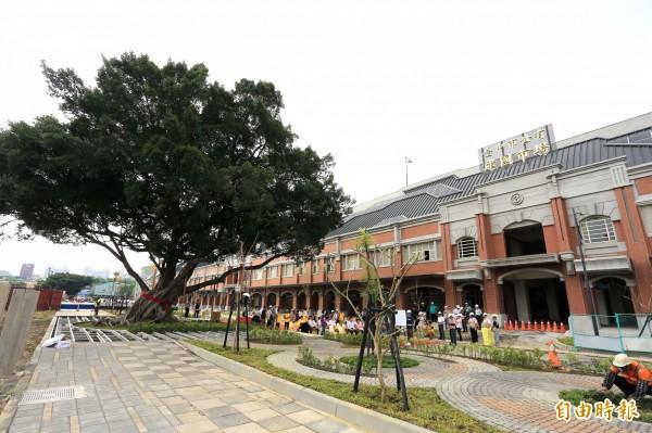 百年榕樹將成建國市場新地標。(記者張菁雅攝)