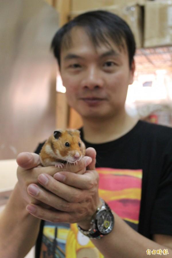台大心理系副教授賴文崧透過手中的倉鼠和基因轉殖小鼠研究人類的心智行為,探究思覺失調症的致病原因和可行的治療方向。(記者黃美珠攝)