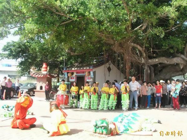 竹北市隘口里活動中心前的廣福宮,有2棵雄偉的大榕樹,又名夫妻樹,原本枝葉茂盛。(資料照。記者廖雪茹攝)