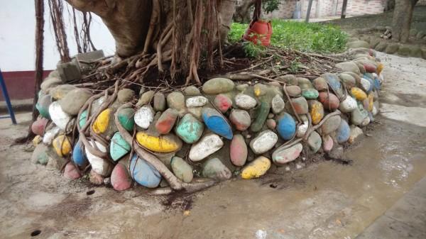 隘口里長蔡家邦曾依樹醫建議,在榕樹周邊的水泥地面打洞,洗根並填入有機質。(蔡家邦提供)
