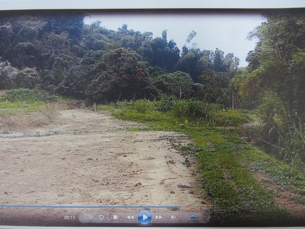 鏡面水庫水源區涉違法整地遭開罰。(記者蔡文居翻攝)