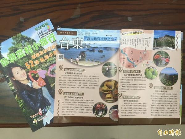 台東農村小旅行各有不同特色。(記者張存薇攝)