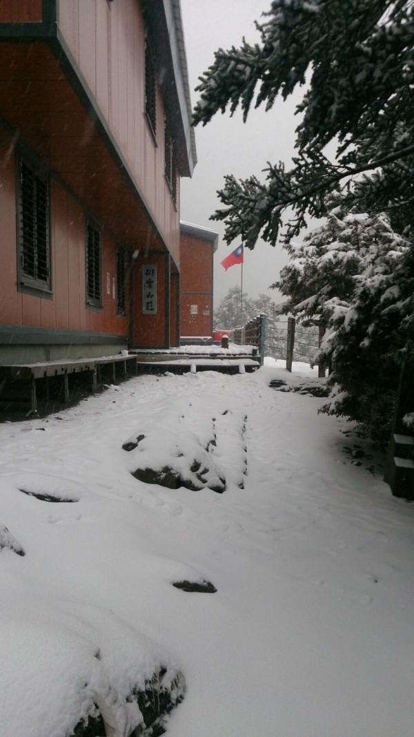 玉山雪勢又急又大,短短三個多小時積雪已達十三公分。(玉管處提供)