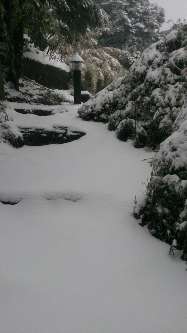 玉山雪勢又急又大,排雲山莊積雪已達十三公分。(玉管處提供)