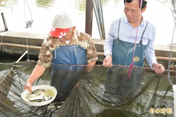 花壇鄉漁民吳東蓮(左)以獨特的「數魚歌」來計算魚苗數量,鄉長李成濟(右)也跟著學唱。(記者湯世名攝)