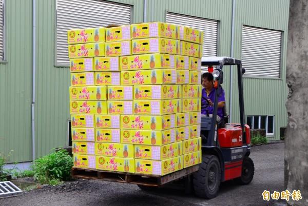 分裝後的關廟鳳梨,將送上貨櫃車,啟航外銷至中國。(記者吳俊鋒攝)