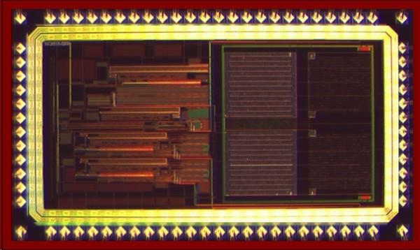 由國立交通大學電子所教授李鎮宜和博士研究員賴義澤所共同研發的廣用型檢測晶片,又名「萬用型感測晶片」。(圖由賴義澤提供)