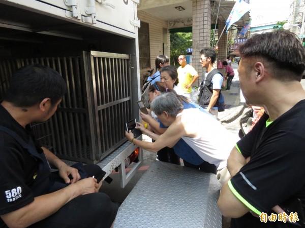 民眾搶拍台灣彌猴。(記者林欣漢攝)