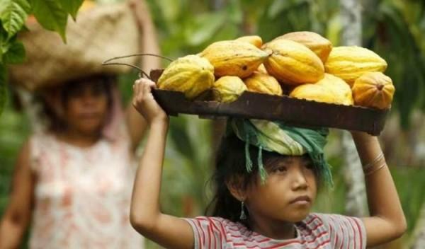 聯合國報告指出,比起同年齡的男孩,全球女孩多花40%的時間從事家務。(路透)