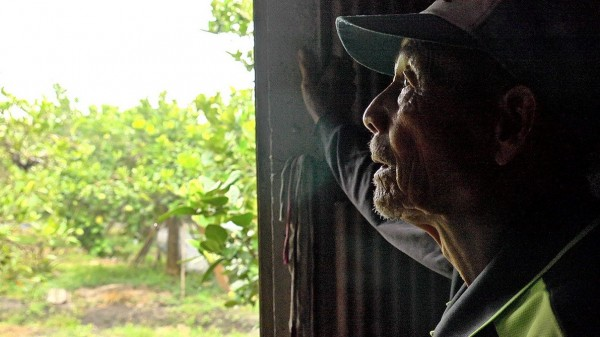 導演張緯誌用鏡頭紀錄老農謝天賜和土地的故事。(蜜蜂故事館提供、記者廖淑玲翻攝)