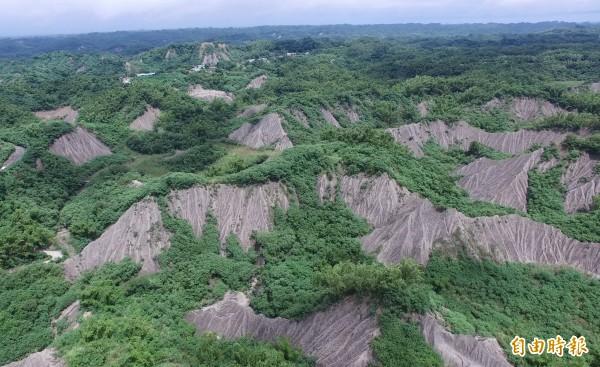 絕美的龍崎白堊泥岩地形為世界級美景。(記者蔡文居攝)