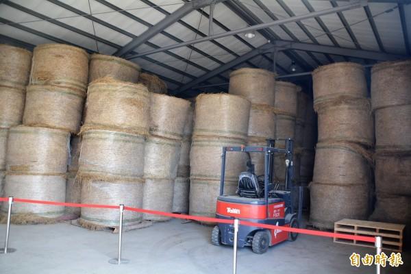 彰化縣國產芻料供應中心販售的國內牧草,比國外進口便宜一半以上。(記者張聰秋攝)