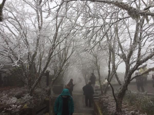 太平山莊中央階梯景致。(記者江志雄翻攝)