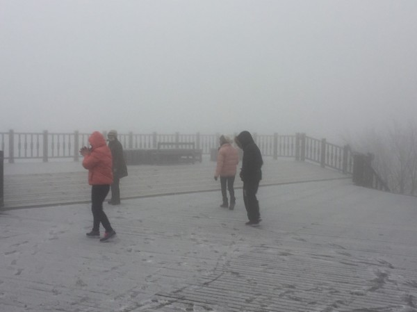 太平山今天清晨降到零下3度,降下冰霰,成了銀白世界。(記者江志雄翻攝)