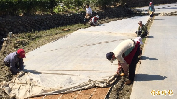 新竹縣的1期稻作本月底就要插秧了,政府因應水情吃緊,還在評估是否停灌休耕,但是農民播種、育苗、插秧等作業都有一定計畫,沒有明快的決策因應,農民的損失就越大。(記者黃美珠攝)